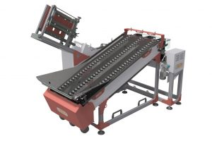 FRUIT COUNTER WITH PUNNET FILLING LINE 2